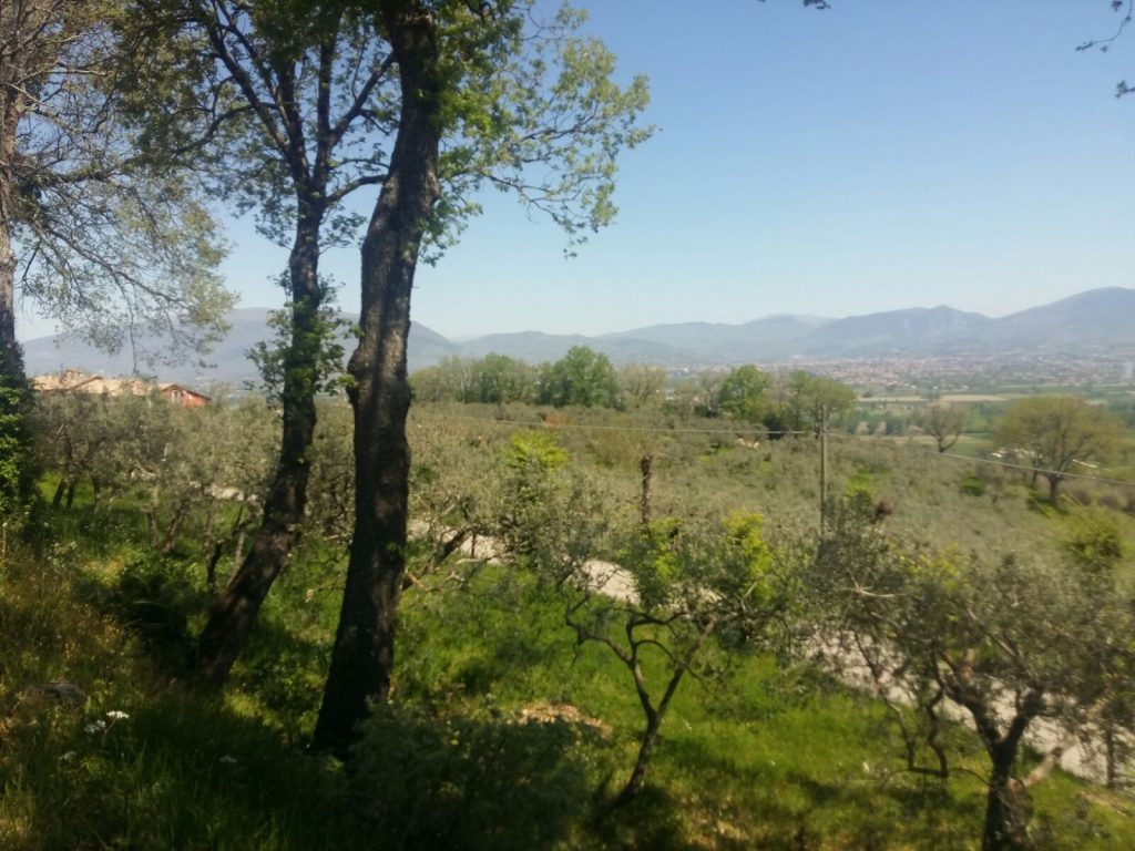 montefalco-italy-threes-your-italian-travel-guide