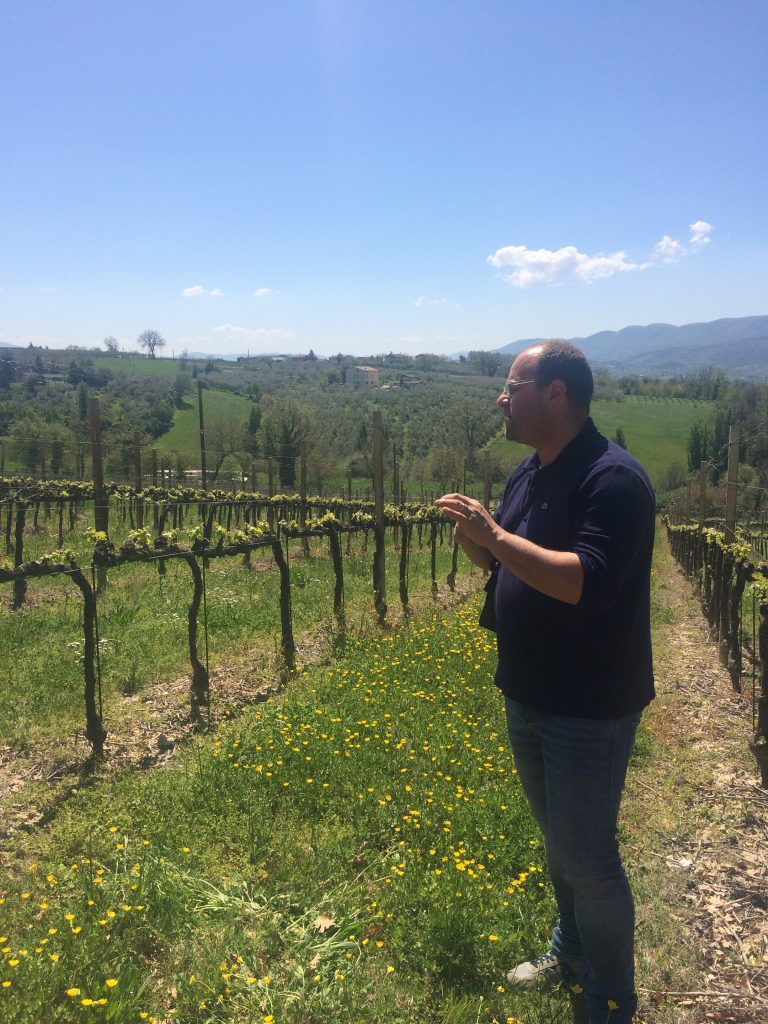 montefalco-italy-tour-olive-threes-your-italian-travel-guide